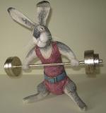 Заяц-штангист