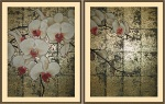 Орхидеи фаленопсис диптих