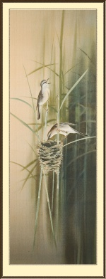 Гнездо камышовки