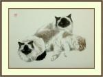 Кошки. Троица