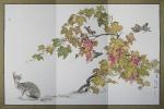 Мася в винограднике